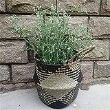 Mallalah Nordic Seagrass Straw Basket Cesta Trenzada Cesta de lavandería Cesta de Mimbre Plegable con macetas con Asas (Negro, Large)