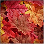 Whaline 300 Pieces Artificial Autumn Maple Leaves Mixed Fall Colored Leaf for Weddings, Events, Art Scrapbooking and Thanksgiving Day Decorations (Red)