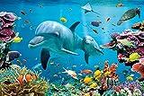 GB Eye Limited Tropische Unterwasserwelt Poster, 92x61