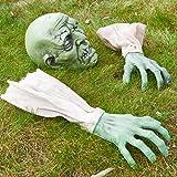 """Spaventa i tuoi ospiti con Prextex terrificanti paletti da giardino faccia e braccia zombie! Il set include: 1 faccia zombie con paletto in plastica 6"""", 2 braccia zombie coperti dalle maniche e attaccate ai paletto giardino Ciascun braccio misura 14""""..."""