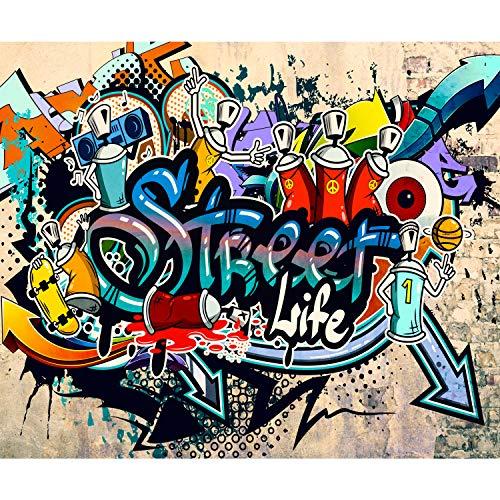 decomonkey | Papier peint intissé Graffiti 250x175 cm Trompe l oeil | Déco Mural Tableaux Muraux Photo Street Art Brique Mur de Pierre