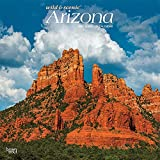 Arizona Wild & Scenic 2022 12 x 12 Inch Monthly Square Wall Calendar, USA United States of America Southwest State Nature