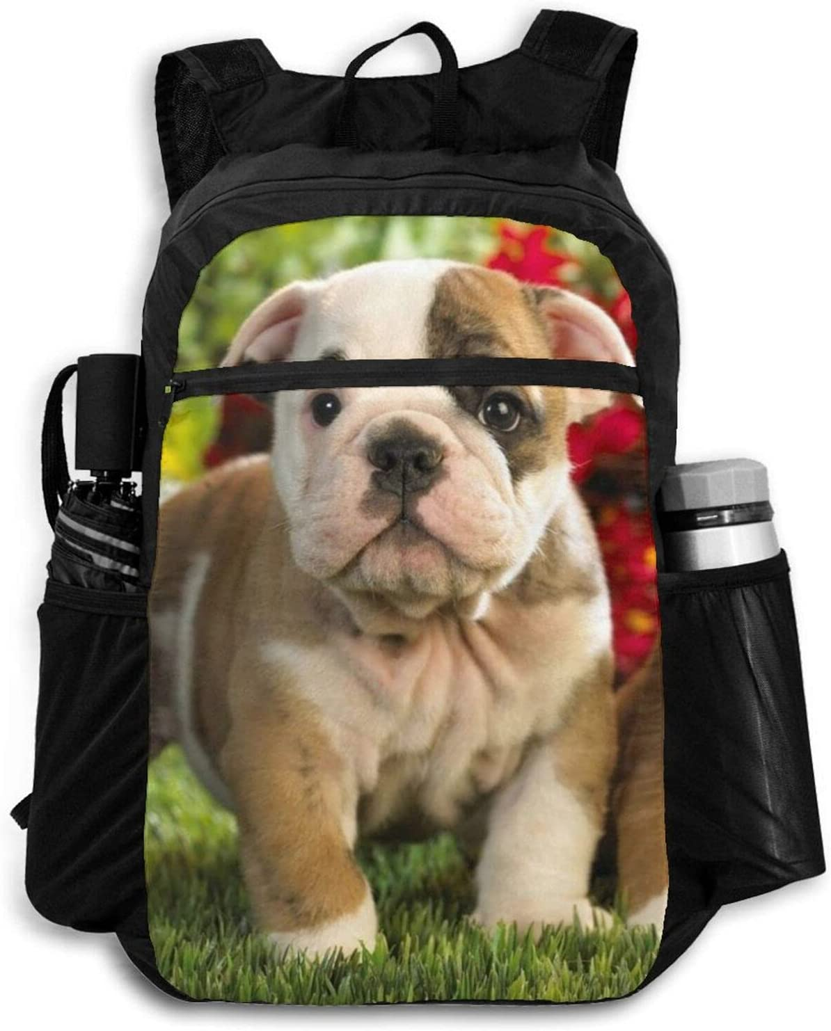 Puppies Rare Dog Lightweight Packable Backpack Recommendation Outdoor Women Men For