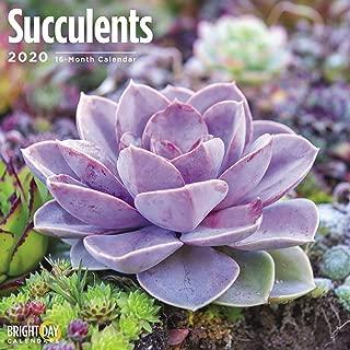 Best floral wall calendar 2019 Reviews