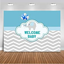 Mocsicka Welcome Baby Theme Chevron Background Baby Birthday Party Background Gray Wavy Stripes Backdrops Baby Shower Background Photography Backdrops Studio Props