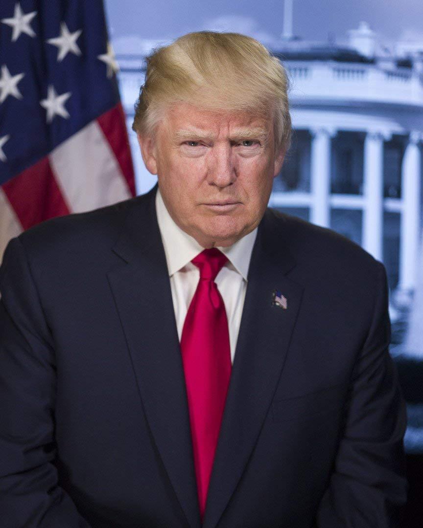 Presidential Portrait of President Donald Trump 8x10 Photo