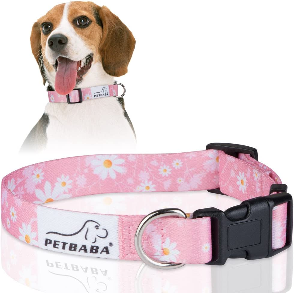 PETBABA Daisy Dog Collar Adjustable Soft Floral with Credence Luxury Pat