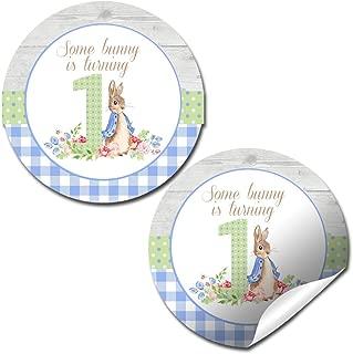 Little Rabbit First Birthday Thank You Sticker Labels for Boy, 40 2