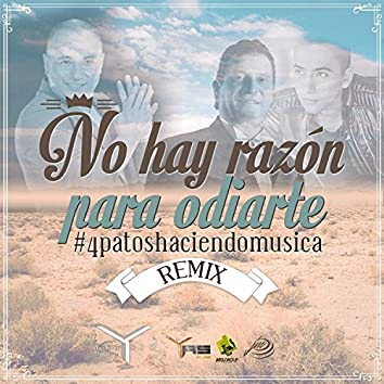 No Hay Razon Para Odiarte (Remix)