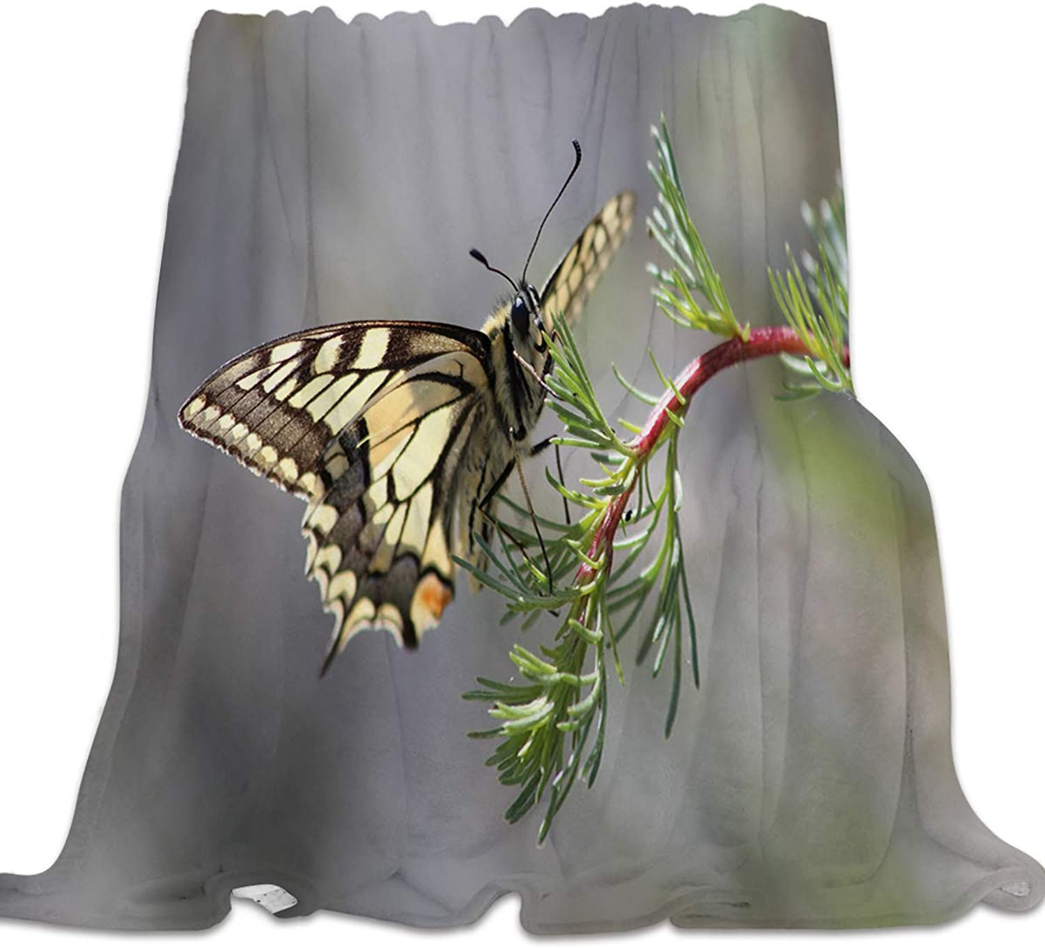 Clouday Flannel Fleece Bed Blanket Warm Throw-Blankets for Girls Boys,Cozy Lightweight Blankets for Bedroom Living Room Sofa Couch,Beautiful 3D Butterfly on The Branch Animal Pattern,39x49inch