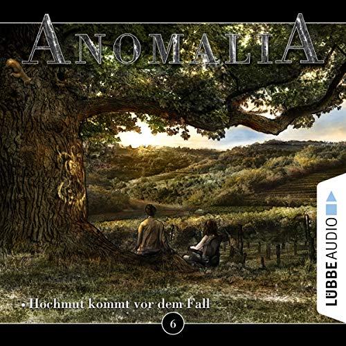 Hochmut kommt vor dem Fall audiobook cover art