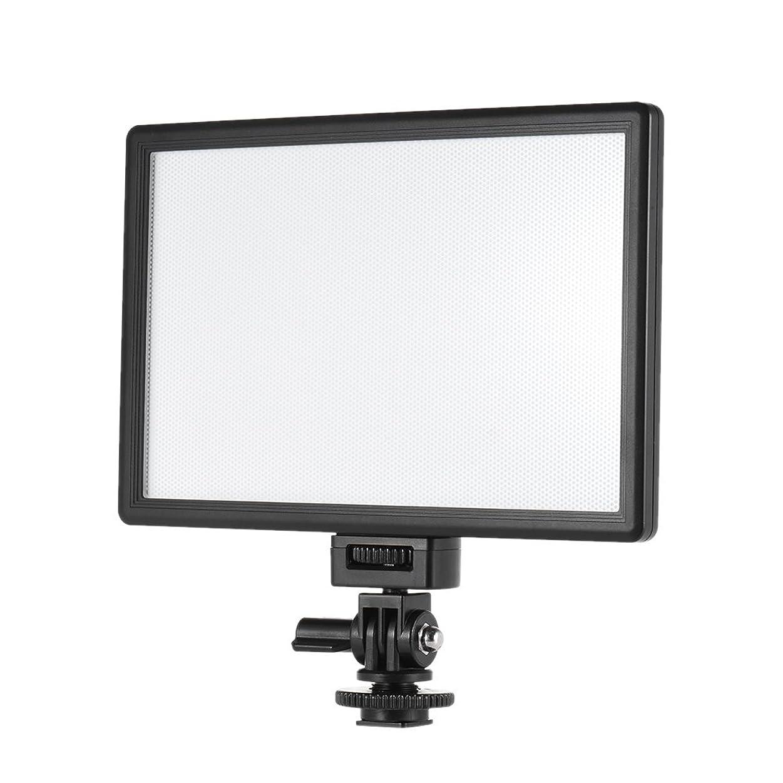 Viltrox L116T プロ 超薄型 LED ビデオライト 写真 フィルライト 輝度と色温度 調整可能 最大輝度 987LM 3300K-5600K CRI95+ キヤノン ニコン ソニー パナソニック デジタル 一眼レフ カメラ ビデオカメラ用