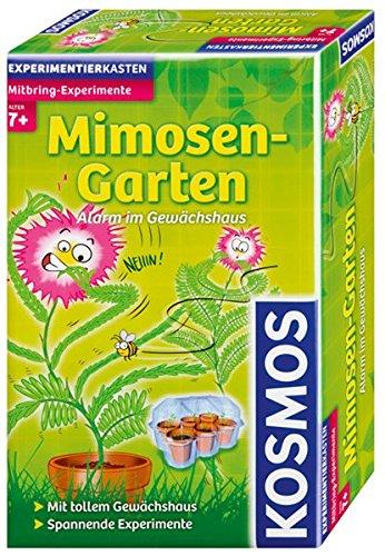Kosmos Mimosen-Garten, Pflanzen züchten und erforschen, Experimentierset mit Gewächshaus für Kinder