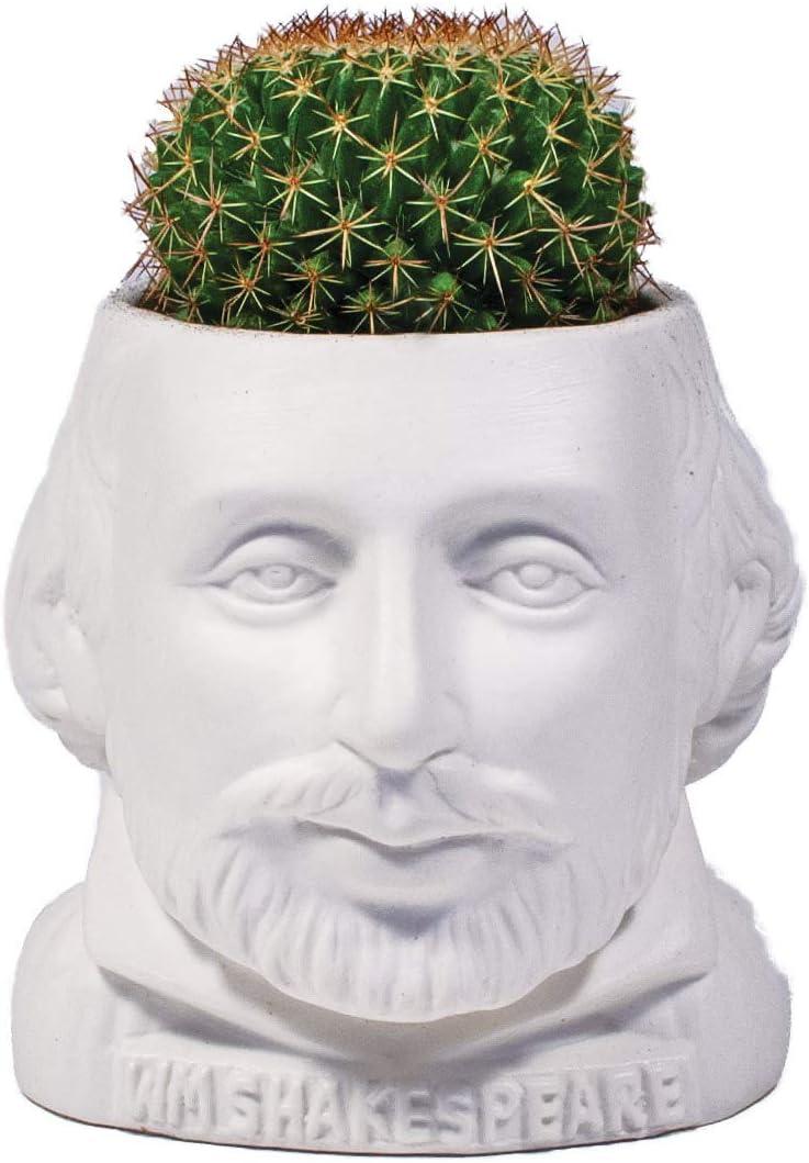The Unemployed Philosophers Guild Shakespeare Succu Bust William famous Fashionable