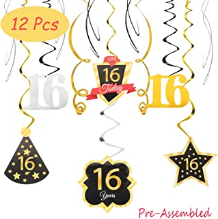 Best party decorations 16th birthday Reviews
