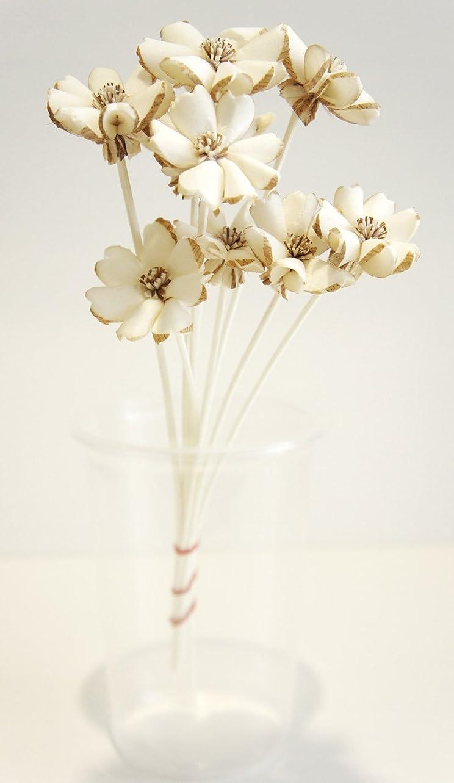 ルート新着気体のエキゾチックエレガンス10プルメリアのセットデザインSola Flower for Aroma Diffuser直径1?1?/ 2