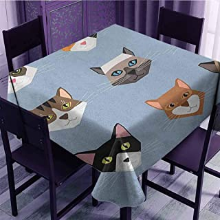 Stylish Square Tablecloth,Cat Animal Portrait Set with Cute Kittens Face Whiskers Contemporary Caricature Pattern,for Dining Kitchen,Multicolor(50