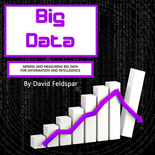 Big Data audiobook cover art