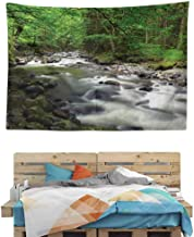 HuaWuChou Riverbed Rocks Trees Tapestry, Nature Landscape Tapestry Wall Hanging for Room, 59W x 39.3L Inches
