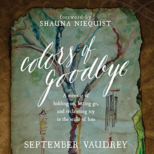 Colors of Goodbye audiobook cover art