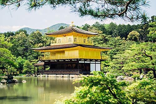 3D Buddhistischer Tempel Goldener Pavillon Japan Malen Nach Zahlen DIY Moderne Wandkunst Bild Oder Erwachsene Kinder Anfänger Acrylfarbe Auf Leinwand Handgemalte Dekoration Geschenk 40X50Cm Rahmenlo