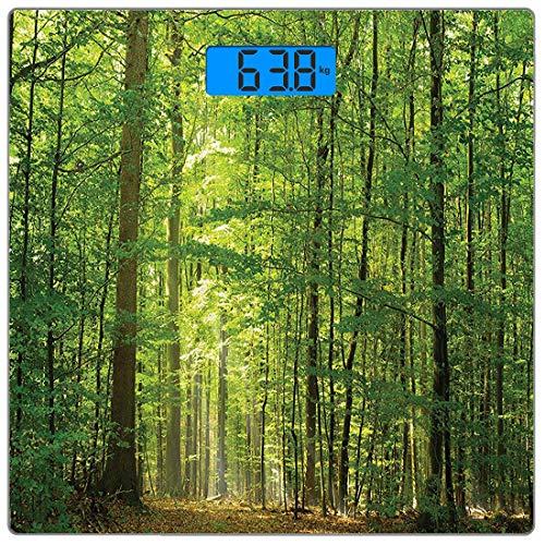 Escala digital de peso corporal de precisión Square Conjunto de bosques Báscula de baño...