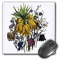 3drose Fritillaria withイエローブルーレッドとホワイト花マウスパッド( MP _ 153225_ 1)