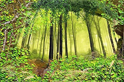 FAWFAW Rompecabezas 300 Piezas, Bosque Verde, Paisaje Natural