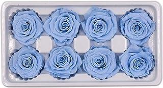 4-5CMローズナチュラル生花8PCプリザーブド永遠のバラの花ボックスNewyearバレンタインギフト HYFJP (Color : 水色, Size : One Size)