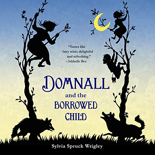 Domnall and the Borrowed Child audiobook cover art