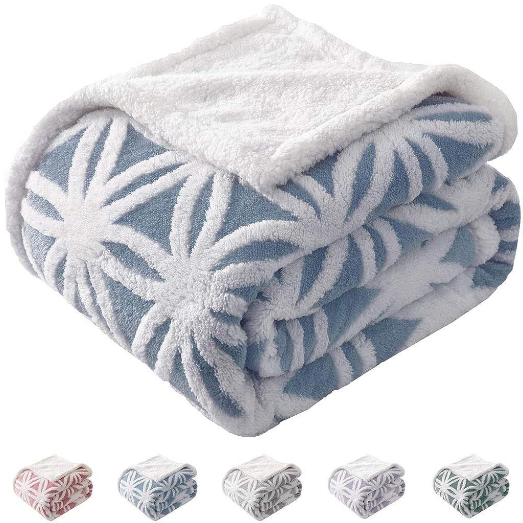 元に戻すエキス晴れKAWAHOME 二枚合わせ 毛布 ダブル 衿付き かわいい 雪柄 パイル シープ調 ボア フリース生地 リバーシブル ブランケットブランケット 両面起毛 厚手 ボリューム プレゼント 柔らかい あったか もこもこ 洗える ベッド 掛け毛布(ブルー 180cmⅹ200cm)