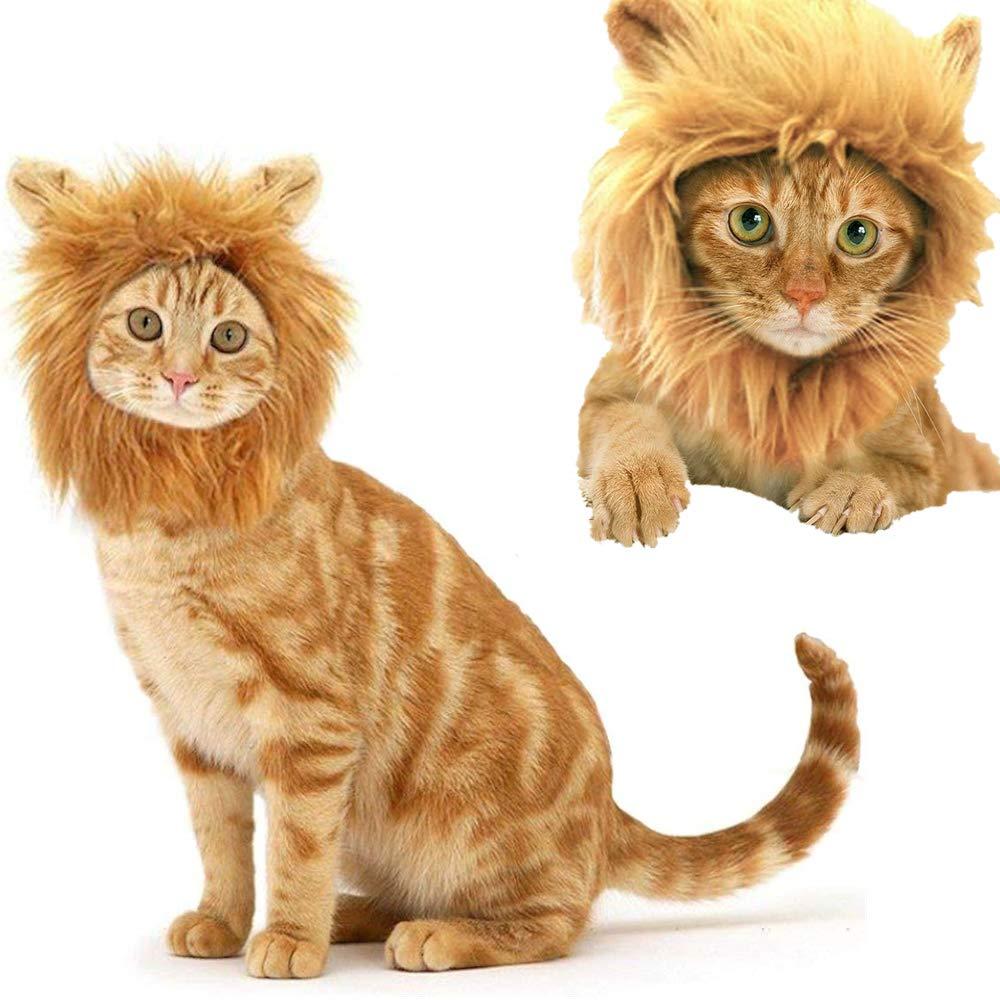 NOBGP Lion Mane Disfraz Gato Perro Ajustable Lavable Cómodo Fancy Lion Hair Cosplay Fiestas Ropa Vestido Halloween Navidad Fiesta de Pascua Fiesta Fiesta Actividad: Amazon.es: Hogar