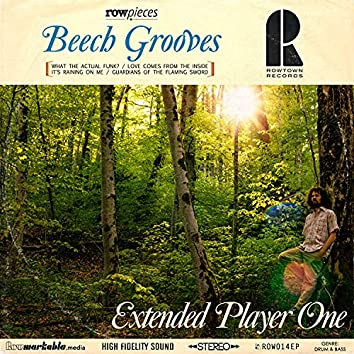 Beech Grooves Extended Player One