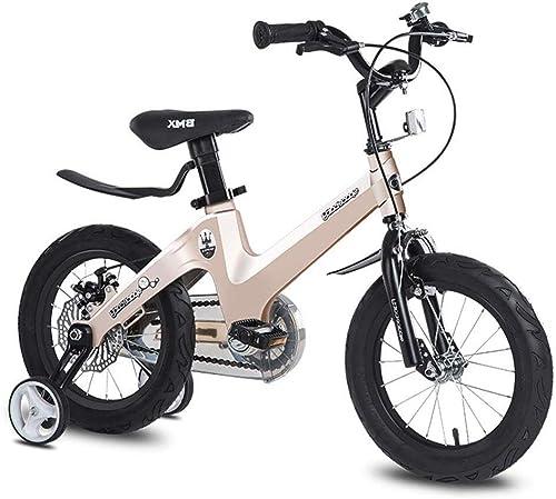 SJSF Y 12 14  16 18  Niños Bicicleta de los Niños de la Bicicleta para 2-6-8-10 años Niños Grils Montar Bicicleta Niños con Pedal Niños Walker,12inches