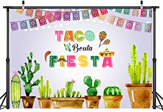 Best mexican fiesta party plates Reviews