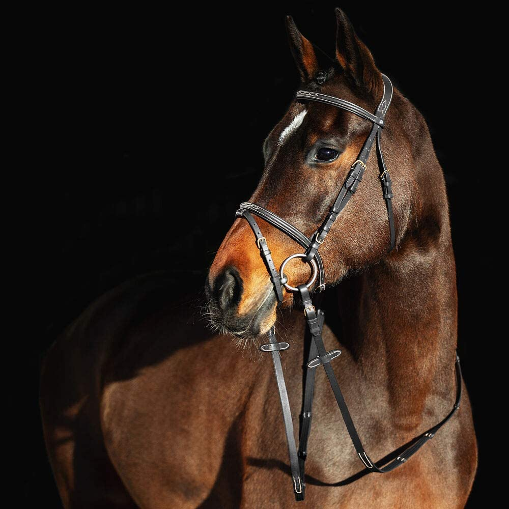 HORZE Constance Padded Fancy Bridle reins Stitch w Cheap mail order specialty sold out store