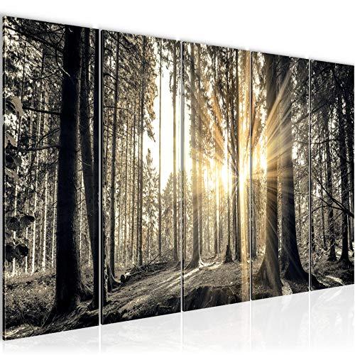 Bilder Wald Landschaft Wandbild 200 x 80 cm Vlies - Leinwand Bild XXL Format Wandbilder Wohnzimmer Wohnung Deko Kunstdrucke Braun 5 Teilig - MADE IN GERMANY - Fertig zum Aufhängen 503855a