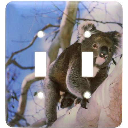 2 Gang Wall Plate Cover Decorator Wall Switch Light Plate Double Toggle Switch Australia Kangaroo Isl Koala Bear Eucalyptus Tree Classic Beadboard Unbreakable Faceplate