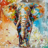DIY 5D Diamond Painting Kits for Adults & Kids Colorful Elephant Full Drill Round Diamond Crystal Gem Art Painting Perfect for Home Wall Decor Gift (12x12inch)
