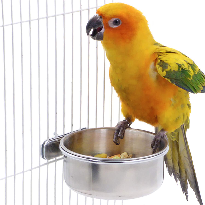 BWOGUE Stainless Cockatiel Parakeet Chinchilla