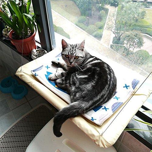 QFFL diaochuang Hamac Toile et Net Tissu Cat Hamac Fenêtre Sucker Suspendu Chat Hamac Chat Hamac de Repos (taille : 55 * 35CM)