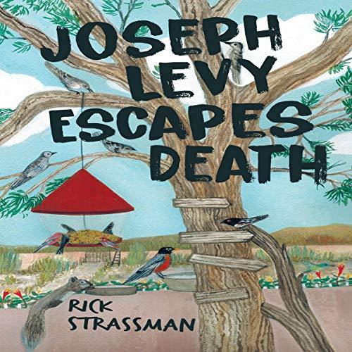 Joseph Levy Escapes Death Audiobook By Rick Strassman cover art