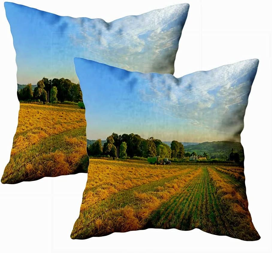 Pamime Decorative Pillow Case Ranking TOP6 100% quality warranty Cute Even Covers Throw Late
