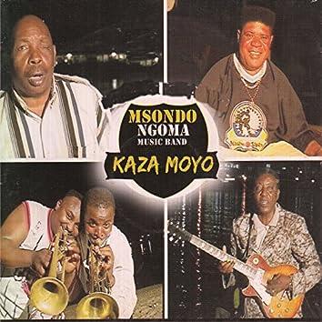 Kaza Moyo