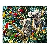 Demarkt Koala und Papagei Diamant 5D Diamant Gemälde Kreuzstich Kits DIY handgefertigt Diamant Stickerei Gemälde Strass