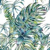 murando Papier peint intissé Tropical feuilles motif de plante Monstera10 m Décoration Murale XXL Poster Tableaux Muraux Tapisserie Photo Panneau décoratif Photo sur le mur Trompe l'oeil b-A-0369-j-a