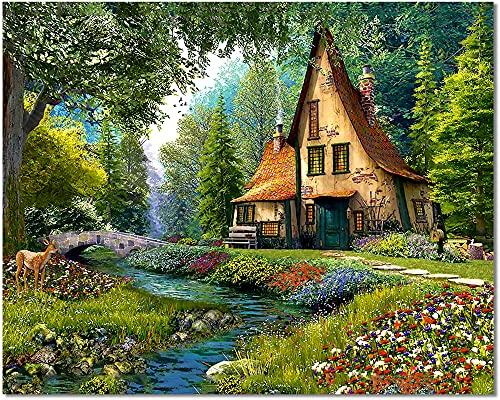 Bougimal Dipingere con i Numeri Adulti Paesaggi, Decorazione della casa senza Telaio 40 * 50 cm