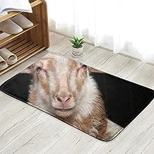 Cool pillow Close Portrait Sheep Drent Heath Animals Wildlife Doormat Entrance Mat Floor Mat Rug Indoor/Front Door/Bathroom/Kitchen and Living Room/Bedroom Mats 23.6 X 15.8 Inch