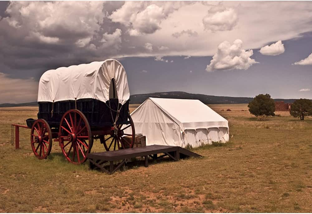 OERJU Rare 5x4ft Wild West Wagons Outdoor Backdrop Grass Travel Popular products Theme