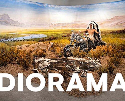 Diorama – Erfindung einer Illusion: Kat. Schirn Kunsthalle Frankfurt